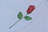 Bandeira da CIFRATER